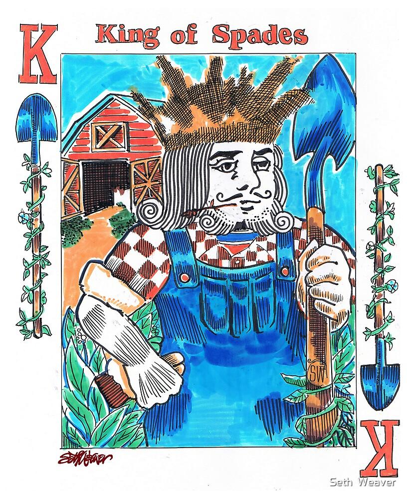 Modern King of Spades by Seth  Weaver