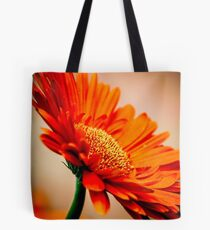 Warm Summer Twilight  Tote Bag