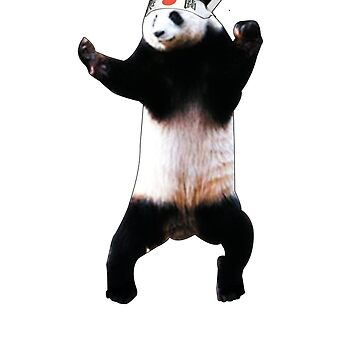 Karate Panda by cooljules