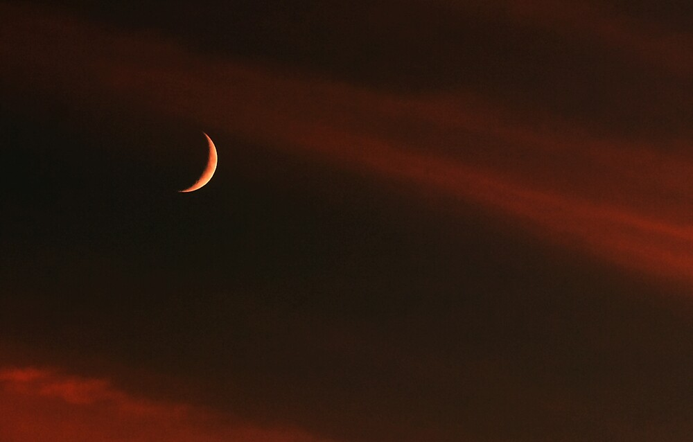 Crescent Moon by kitlew