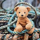 Ted's In A Tangle by Susie Peek