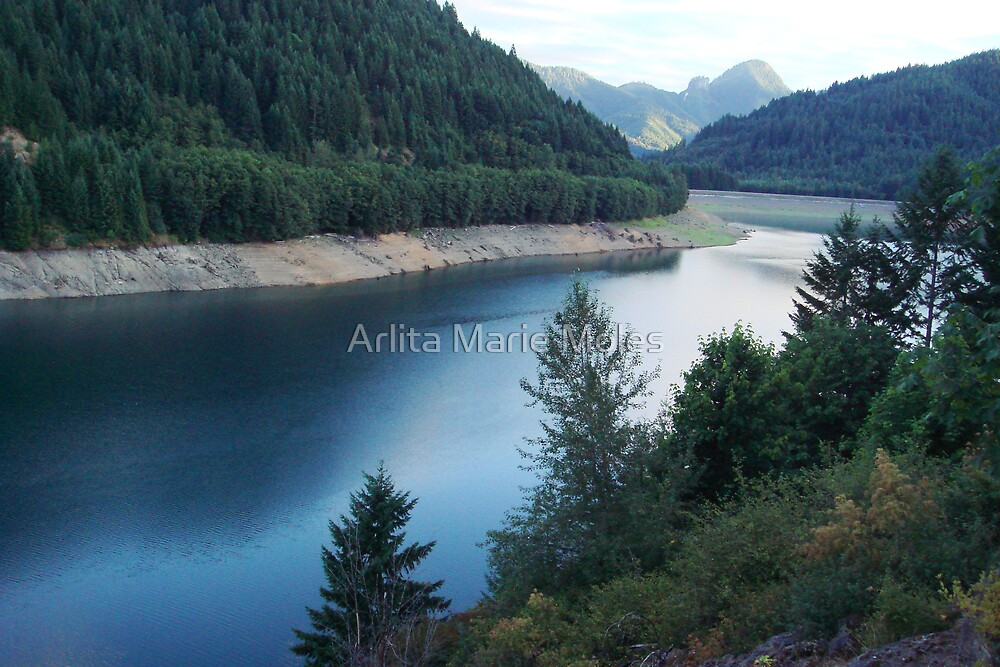 Blue River Res. by Arlita Marie Moles