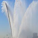 WORLD PORT DAYS 2012 ~ Rotterdam I by Hans Bax