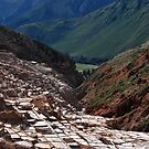 Salt Ponds in Maras, Peru by Alessandro Pinto