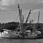 Old Shrimp Boats by Cynthia48
