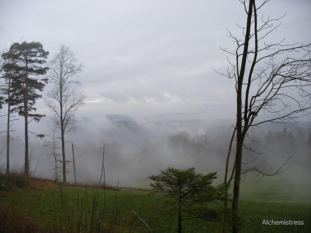 Misty Terrain by Alchemistress