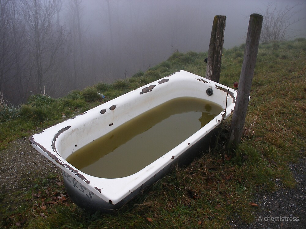 Bathtub in the Wilderness by Alchemistress