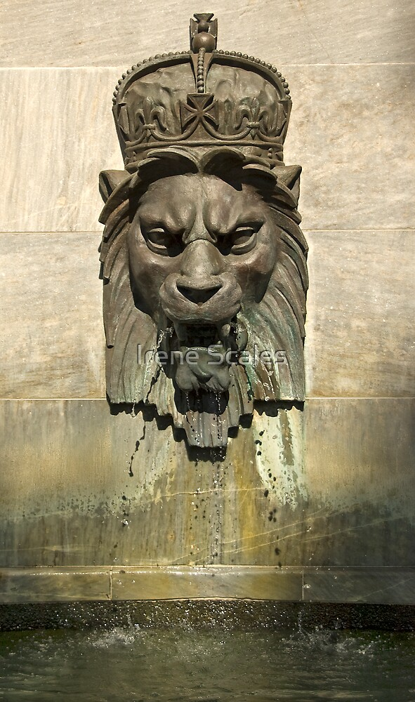 Lion Head Fountain II by Irene Scales