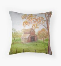 Old Barm Throw Pillow