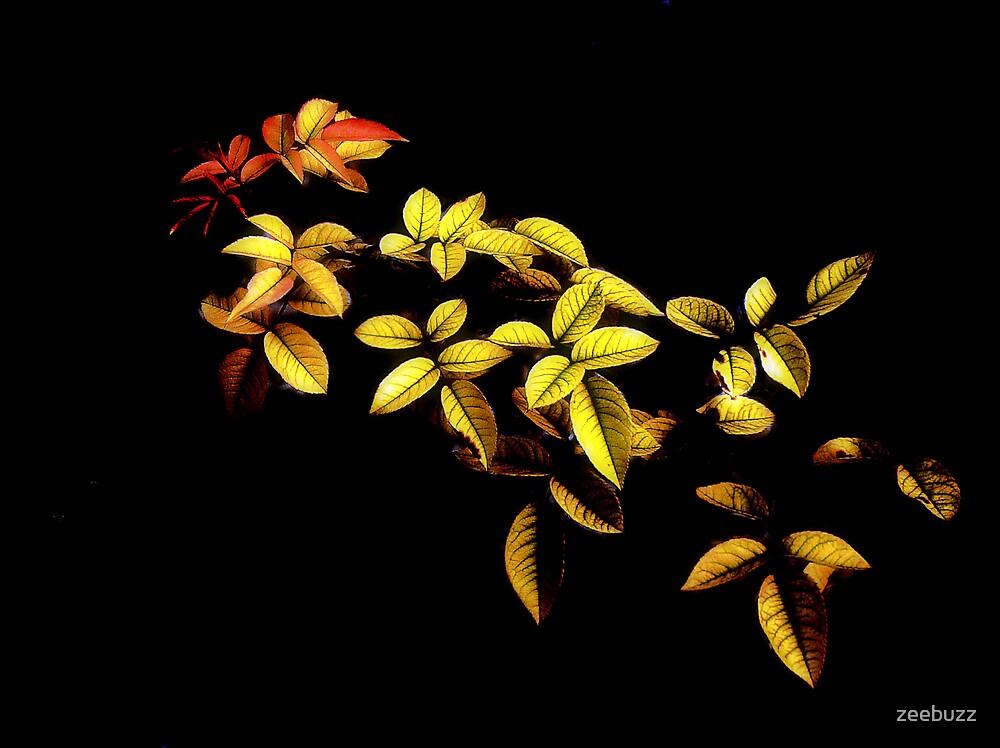 Rose Leaves by zeebuzz