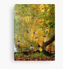 Chatting Ducks Canvas Print