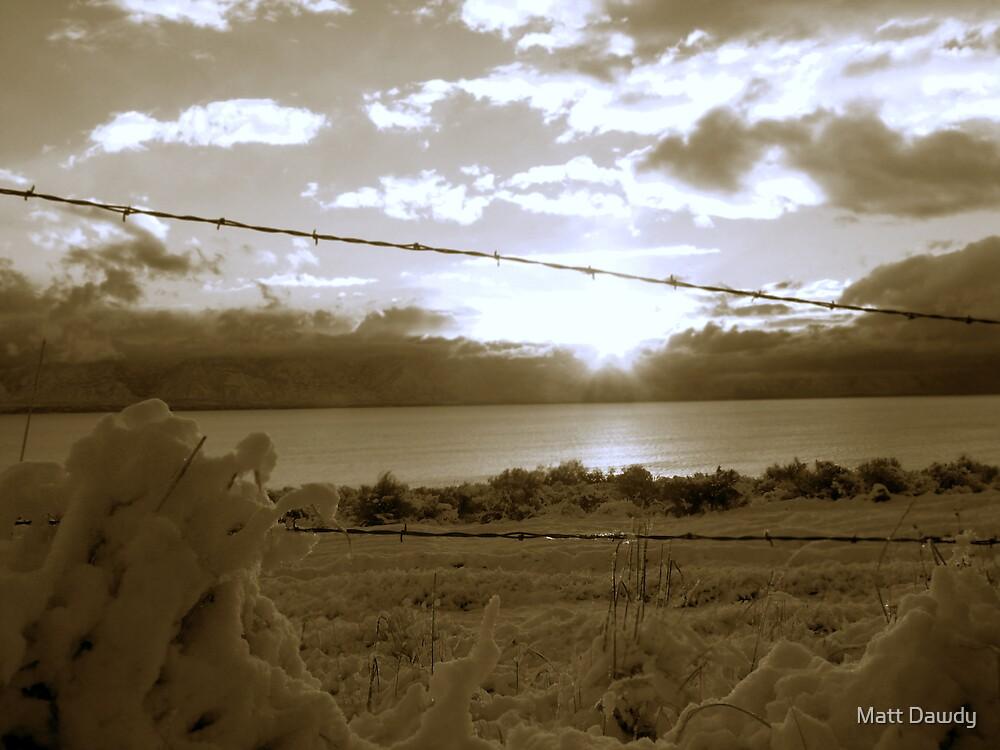 Icy Morning by Matt Dawdy