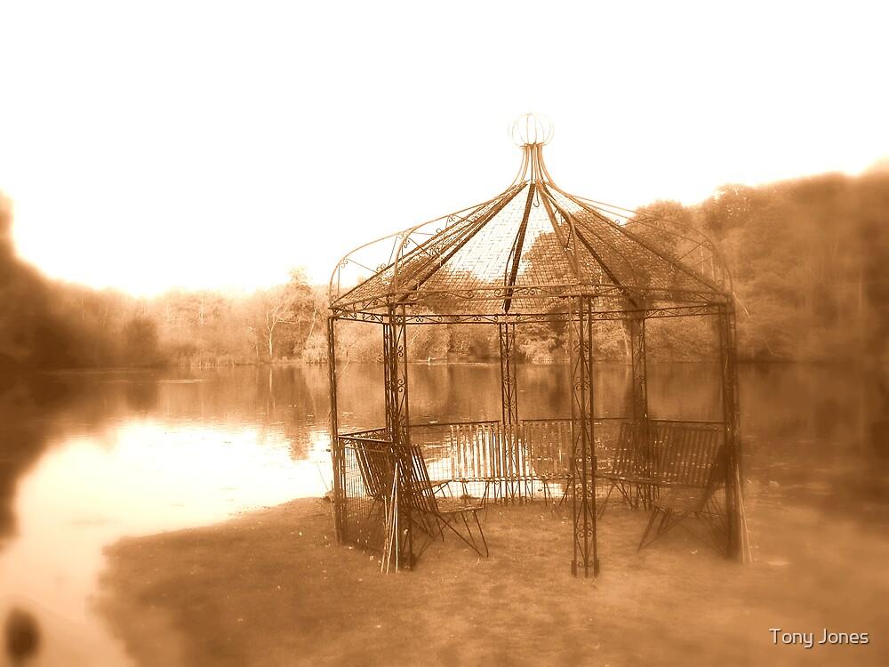 Gazebo & Lake at Powdermills Hotel Sussex by Tony Jones