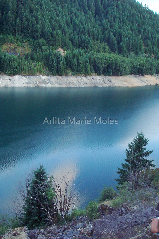 BlueWater Dream by Arlita Marie Moles
