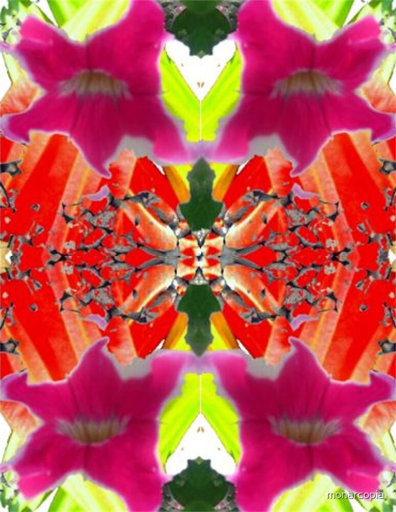 Kaleidescape by monarcopia