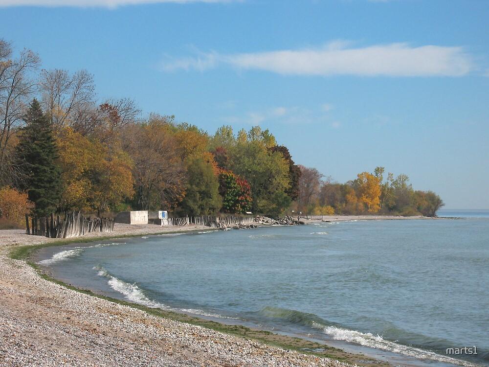 Ajax at the Lake by marts1