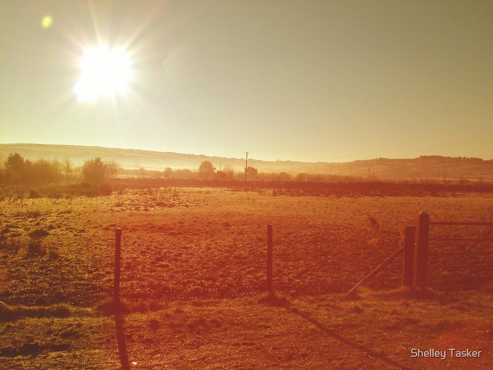 Early Sunrise by Shelley Tasker