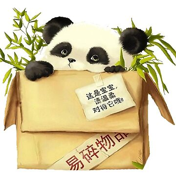 Panda In The Box by irmachan