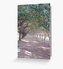 walk the loney path... Greeting Card