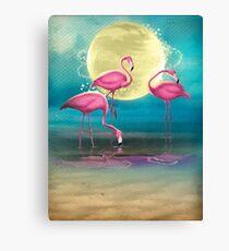 Pretty Flamingo's. Canvas Print