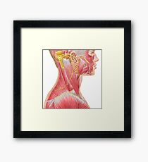 Accessory nerve view showing neck and facial muscles. Framed Print