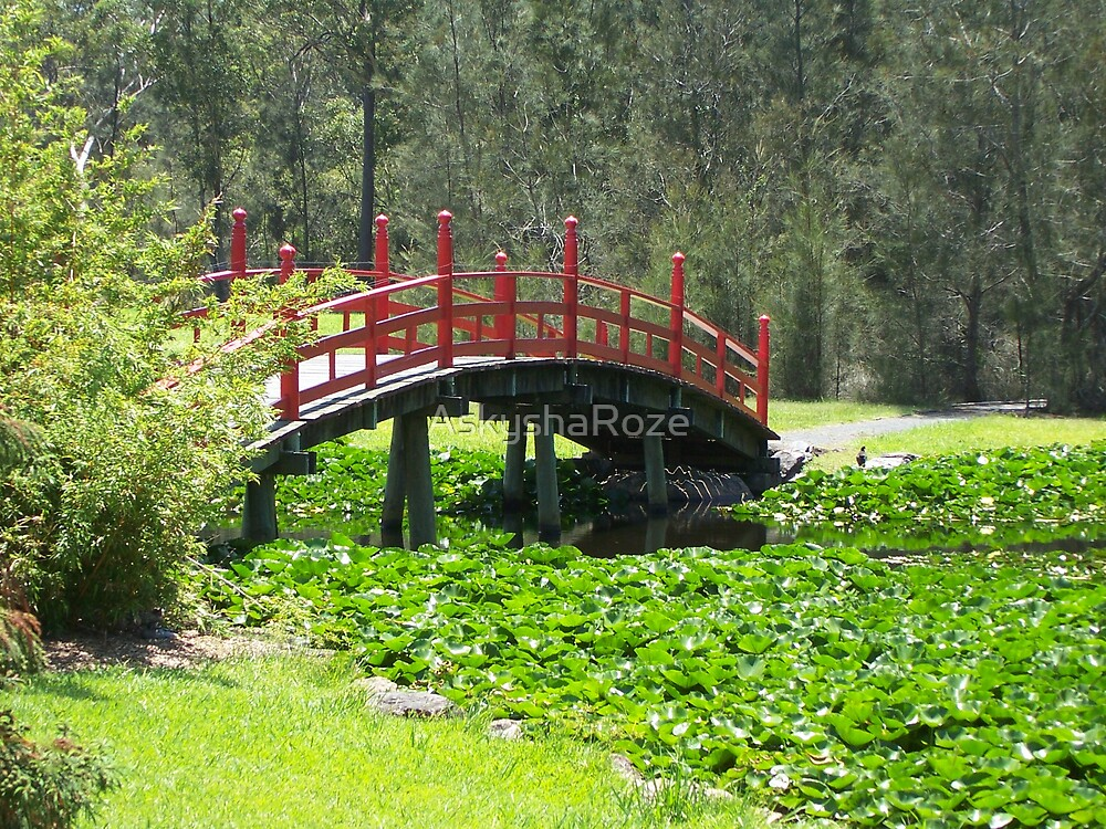 Japanese Bridge by Kylie  Metz