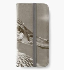 Dabbling Duck iPhone Wallet/Case/Skin