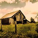 """""""Pure Country""""... prints and products by © Bob Hall"""