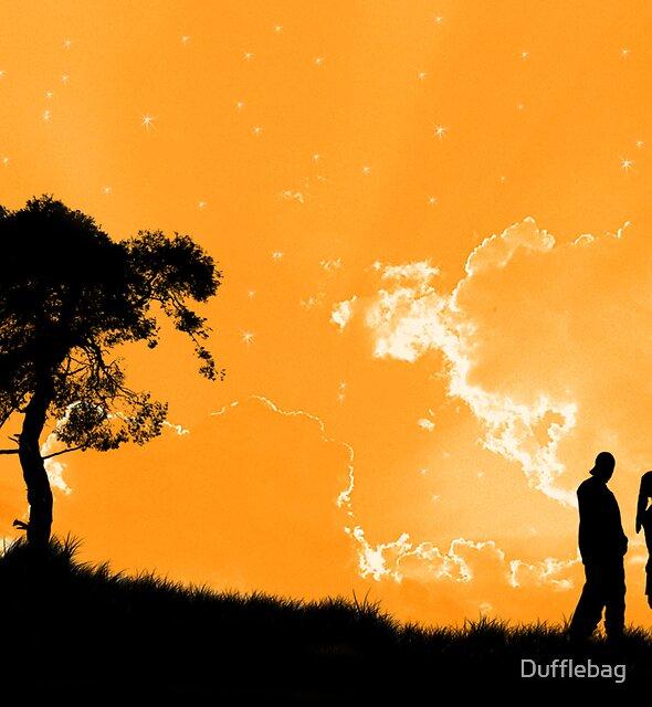 Its Orange not an Orange by Dufflebag