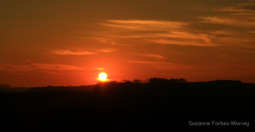 Sunset by Suzanne Forbes-Murray