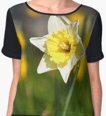 Narcissus Women's Chiffon Top