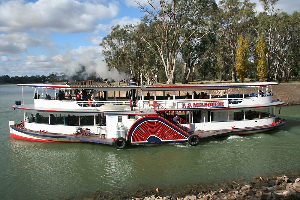 paddle steamer by sherryn pitt