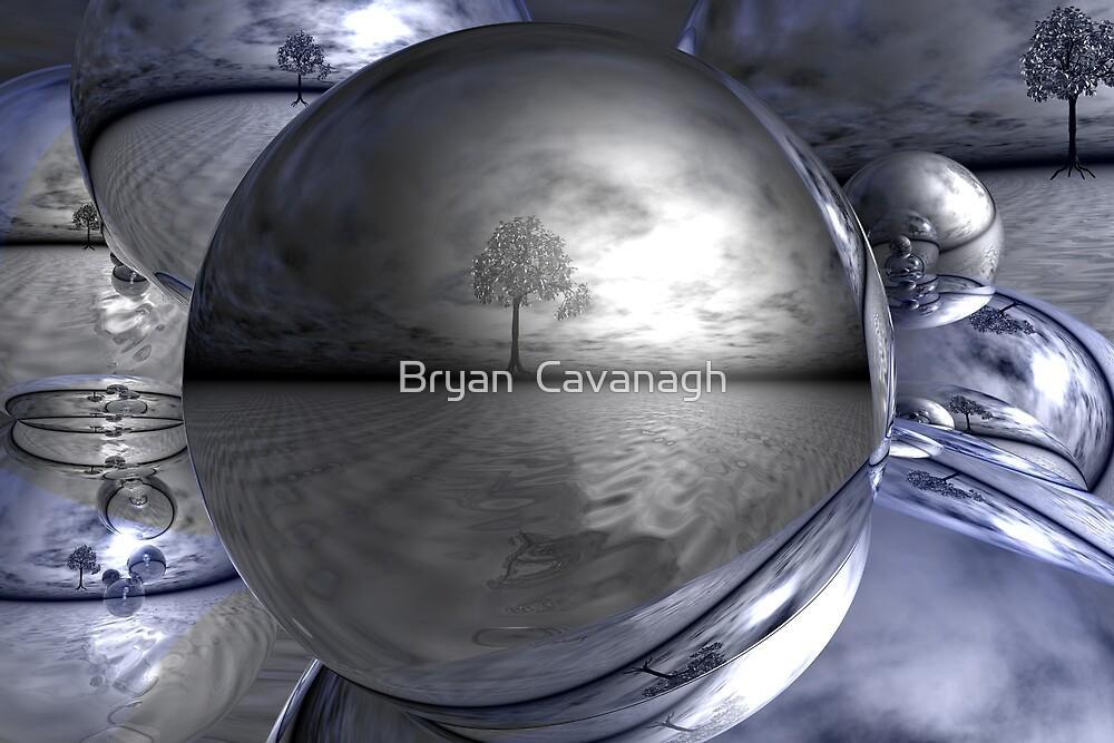 Perception by Bryan  Cavanagh