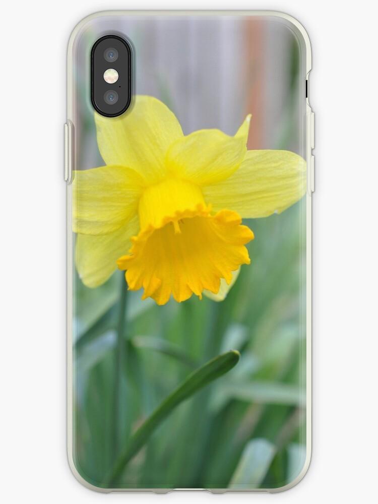 Daffodil by skysonglark