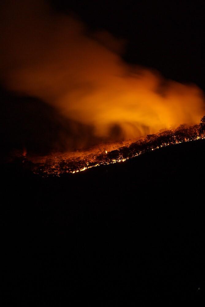 Fire in the dandenongs by Robert Kiesskalt