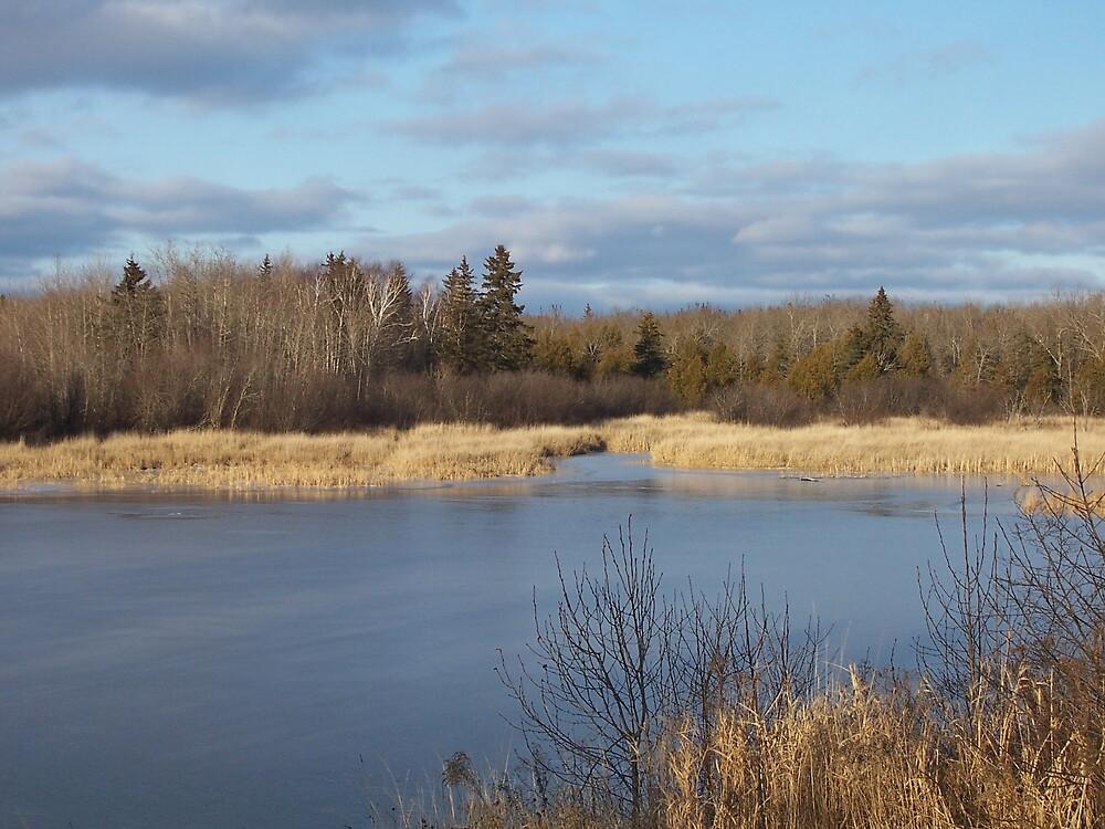 Winter Pond by Gene Cyr