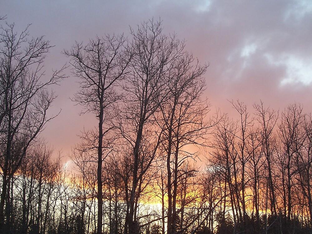 Sunset Clouds by Gene Cyr