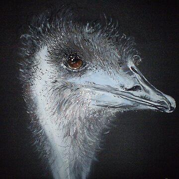 emu by dianeg17