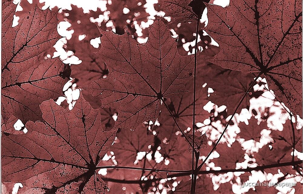 autumn 2 by yuccamayapapaya