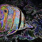 electric fish by senoirpob