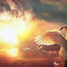 Rising Swan by Igor Zenin