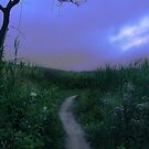 Off the Beaten Path by Jamie Lee