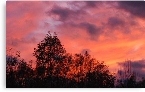 Fire in the Sky  by GailDouglas