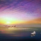 Into The Sun by Igor Zenin