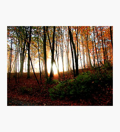 October On Fire Photographic Print