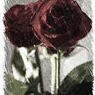 Charcoal Rose by amgunnphotoart