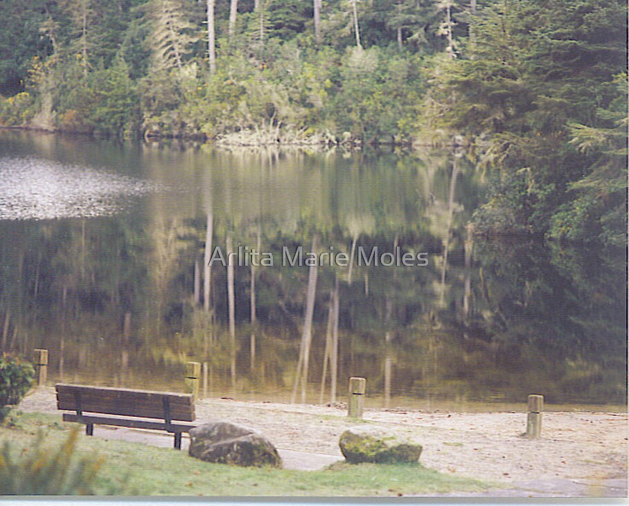 Reflection in the Park by Arlita Marie Moles