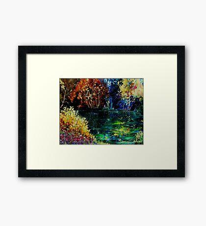 pond 3 Framed Print