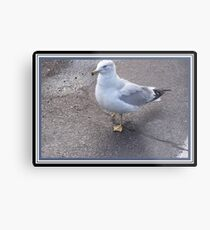 A Disabled Friend Metal Print