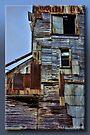 Derelict by Sheryl Gerhard